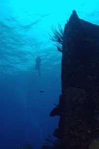 Diver Descending