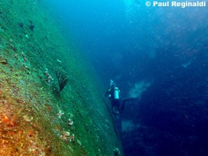 Wreck of the Helma Hooker