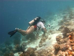 Paul at 'Just a Nice Dive' Dive Sight