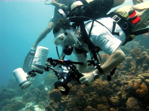 Paul shown location by Leo Martyn, Dive Master
