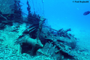 Propeller from Wreck of Our Confidence