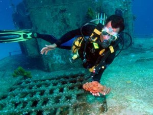 Diver Holding Scorpion Fish