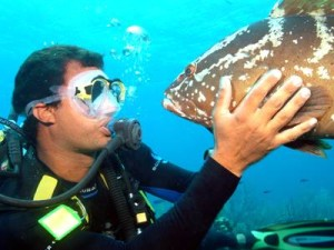 Grouper Wanting a Kiss