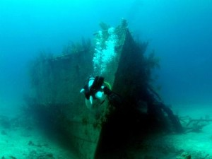 Bahama Wreck