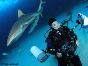Paul with Sharks