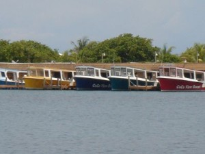 Dive Boats at Coco View
