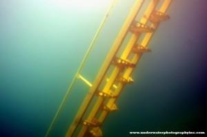 Ladder of Hope